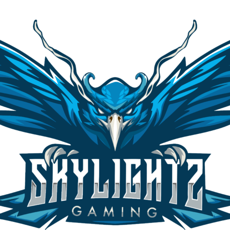 Skylightz Gaming Set to Invest Money for Growth of Indian Esports Talent